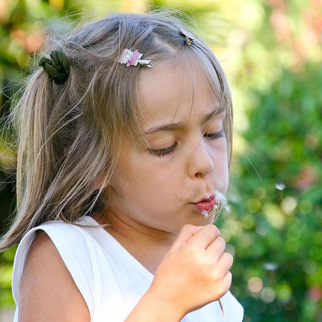 Petite fille soufflant sur un pissenlit.