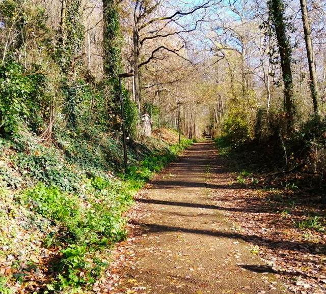Chemin de Moulon