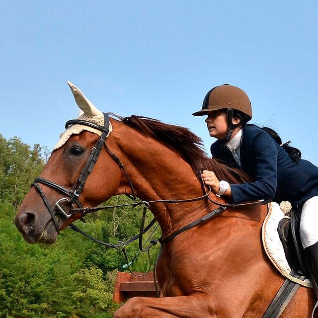 Équitation à la Grange-Martin à Gif-sur-Yvette.